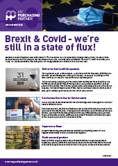 Brexit and Covid: State of Flux